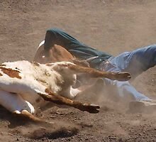 Steer Wrestling, Rodeo, Cowboy by bjuke