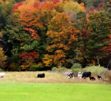 Autumn Foliage Cows In Field by SmilinEyes
