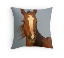 Mungerannie Mare Throw Pillow