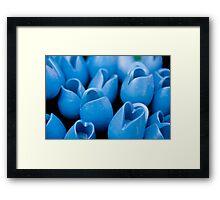 Wooden Tulips Framed Print