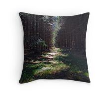 Eggegebirge Throw Pillow