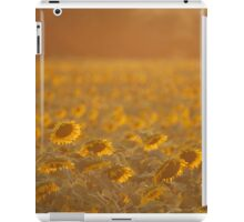 Shining Sunflowers  iPad Case/Skin