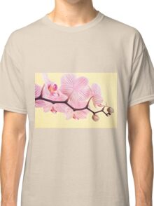 Pink phalaenopsis orchid blossoms Classic T-Shirt