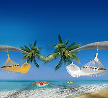 Beach hammocks by Nasko .
