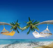 Beach hammocks in Australia by Nasko .
