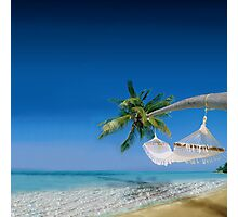 Beach hammocks in Bora Bora Photographic Print