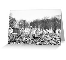 Korean War Memorial | Washington DC | Snow Greeting Card