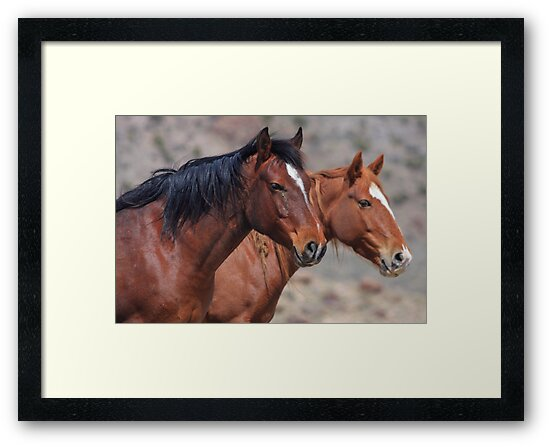 Two Wild by Gene Praag