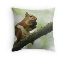 walnut fan Throw Pillow