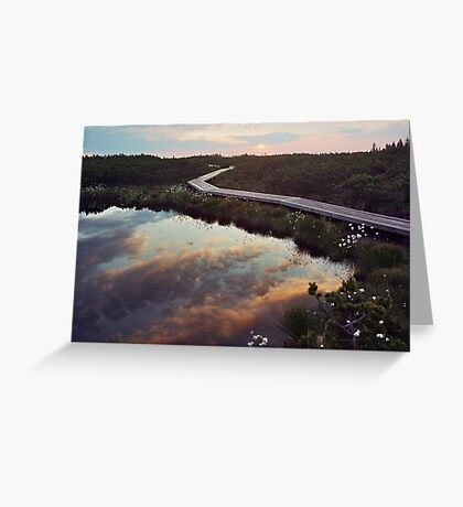 Bog dawn Greeting Card