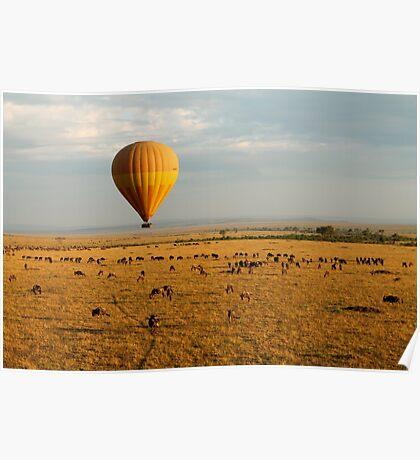 Hot Air Balloon Safari Poster