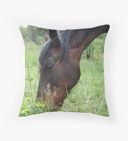 TOBY, THE RACKING HORSE Throw Pillow