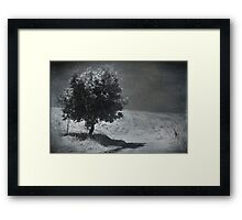 Will You Stay? Framed Print