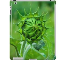 Green is the colour iPad Case/Skin
