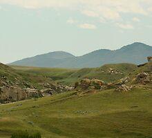 Silohette of Montana Mountains ( For Shilo) by tuffcookie