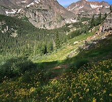 Early morning in Indian Peaks Wilderness by Teresa Smith