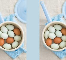 Eggs in a saucepan by Elisabeth Coelfen