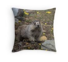 Lily Marmot Throw Pillow