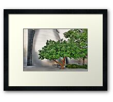 Garden at the Walt Disney Concert Hall Framed Print