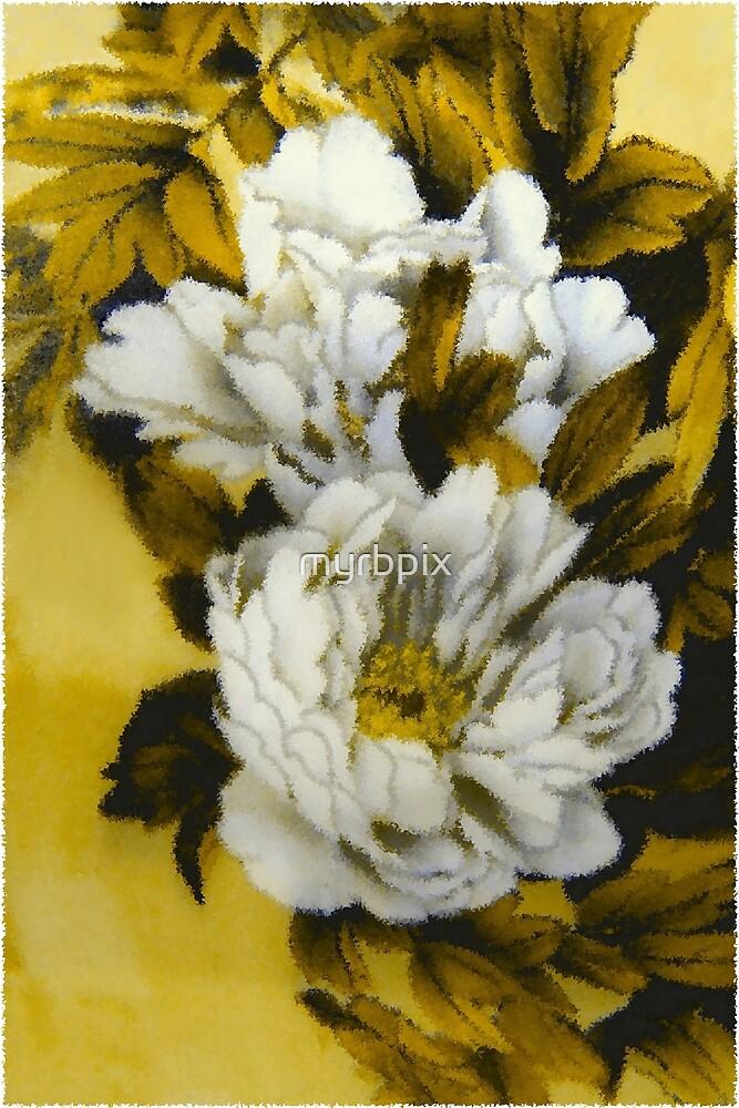 White Peony Flowers by myrbpix