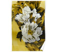 White Peony Flowers Poster
