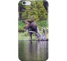 Loose Moose iPhone Case/Skin