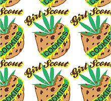 Girl Scout Cookies by Ryan Mulrenin