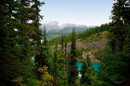 Garibaldi Lake View from the Top Hiking Trail by Yannik Hay