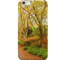Autumn forest in Japan iPhone Case/Skin