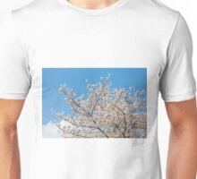 Cherry blossom in Korea Unisex T-Shirt