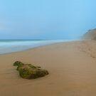 Last light at Pompanio Beach by Zane Paxton