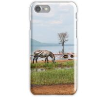 Wild Zebra Tranquility iPhone Case/Skin