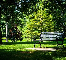 Goodale Park by Mick Pennington