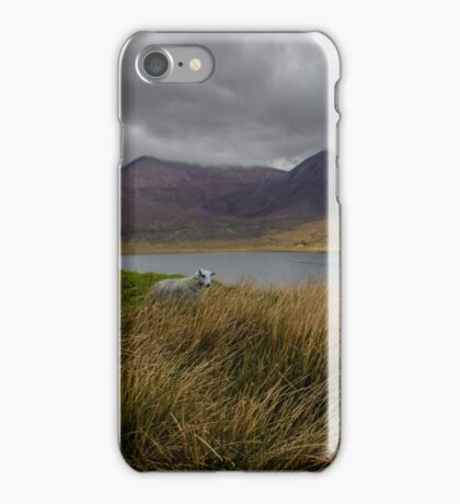 In The Heart Of Scotland iPhone Case/Skin