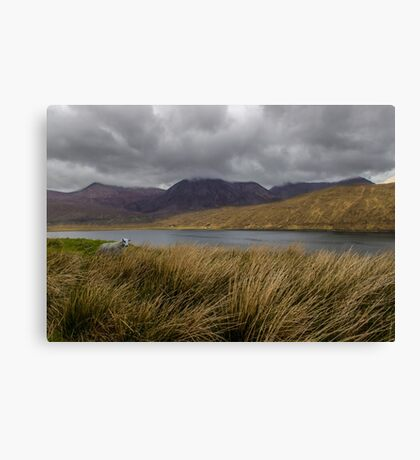 In The Heart Of Scotland Canvas Print