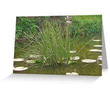 Pond II Greeting Card