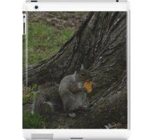 Sunday Squirrel Brunch iPad Case/Skin