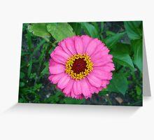 Flower III Greeting Card