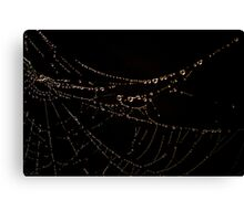 """Misty Web"" Canvas Print"