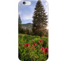 Gem iPhone Case/Skin