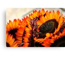 Farmers Market Fiery Sunflowers Canvas Print