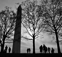 Behold the Washington Monument  by bluemoondc