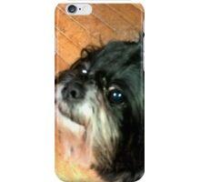 mingfu fiasco smile iPhone Case/Skin