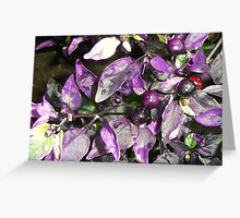 berries on castle grounds Greeting Card