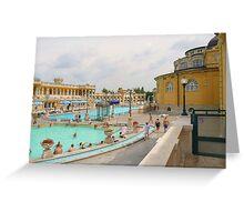 Thermal Baths II Greeting Card