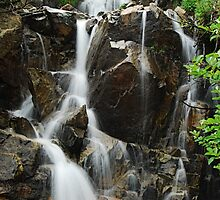 Falls at Chinook Pass by Tori Snow