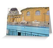 Thermal Baths III Greeting Card