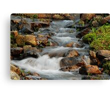 Little Stream at Lake Tipsoo Canvas Print