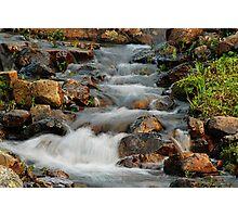 Little Stream at Lake Tipsoo Photographic Print