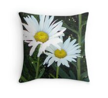 daises Throw Pillow